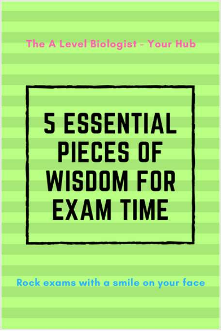 5 Essential Pieces of Wisdom for Exam Time